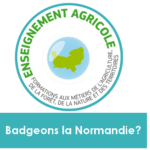 badge-ea-normandie